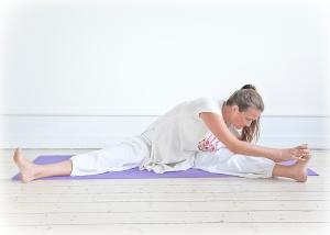 2010-yogastilling-farve-135.jpg